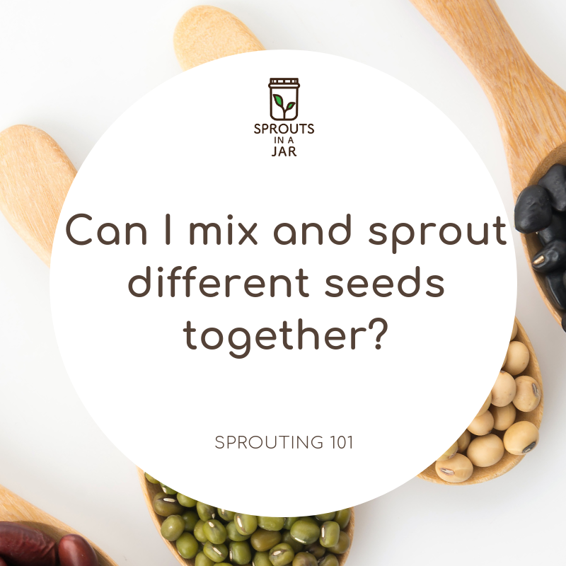Can I mix and sprout different seeds together